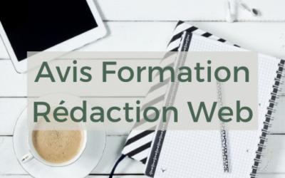 Avis Formation Rédaction Web : utile pour les blogueurs ?